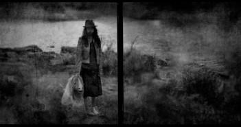 © Vincent Descotils: Le poney