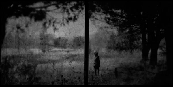 © Vincent Descotils: L'orée du bois