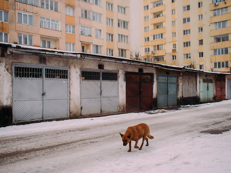 © Hajdu Tamas