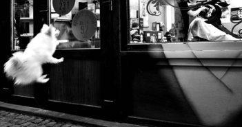 © Mirela Momanu: Last customer