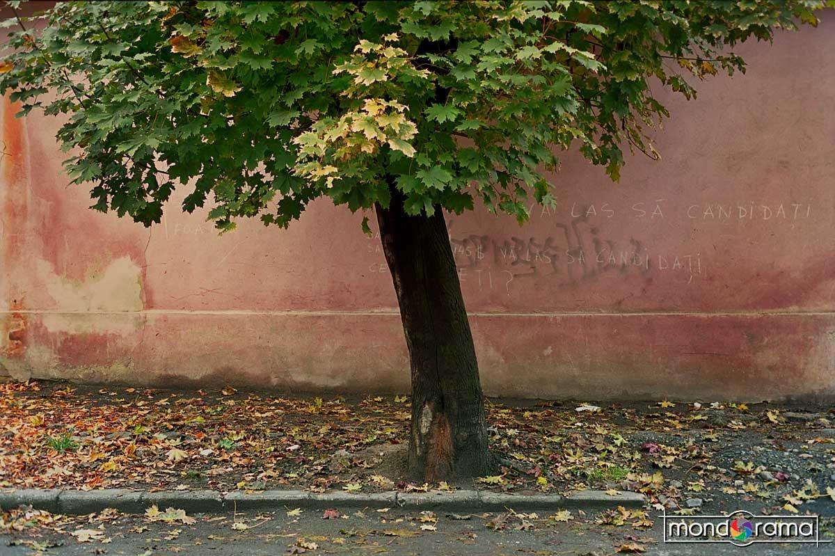 © Oleg Tishkovets