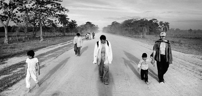 """Amazonas"" - Mads Nissen / Panos Pictures"
