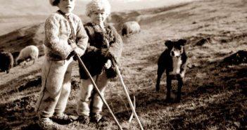 © Ionita G. Andron: Ciobanasi in varful Pietrisului, 1935, Colectia Muzeului Tarii Oasului.