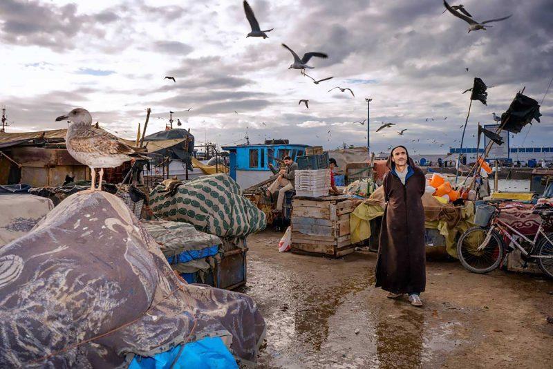 © Radu Mihai Iani, Maroc, 2016