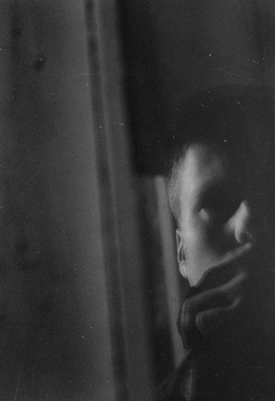 © Alnis Stakle: Taxonomy of Fear
