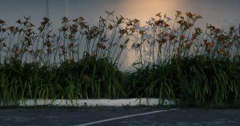 © Oliver Merce: Low Season
