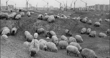 © Victor Boldâr: Extindere (Cartier Craiovita Noua), Craiova, 1970
