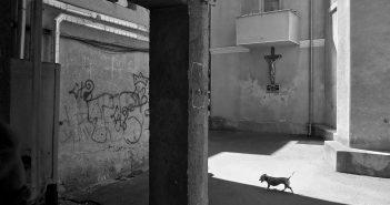 © Cornel Hlupina