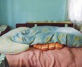 Daniela Groza: Beds