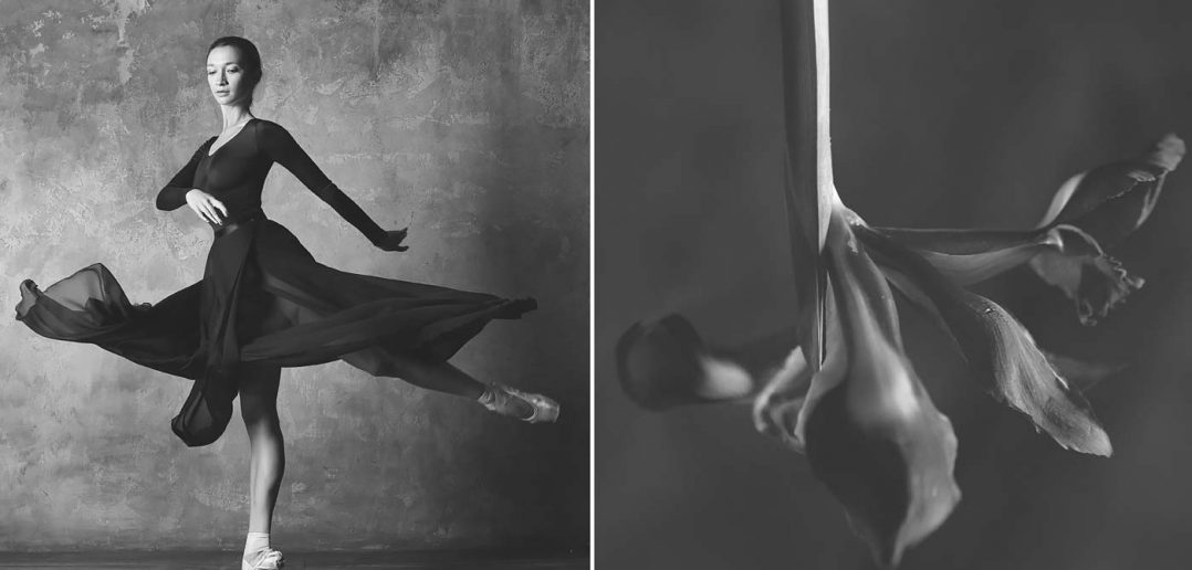 © Yulia Artemyeva: Ballerina and Flowers