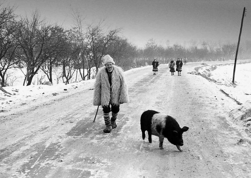© Dan Dinescu, 1978