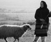 Maramureșul: Ars poetica lui Dan Dinescu (I)