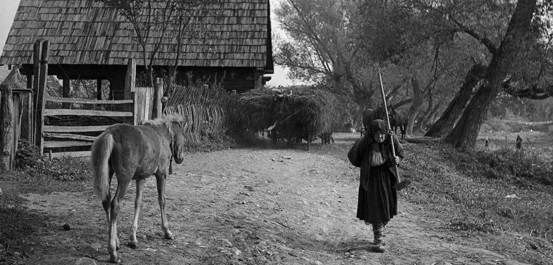 © Dan Dinescu, Ieud, 1975