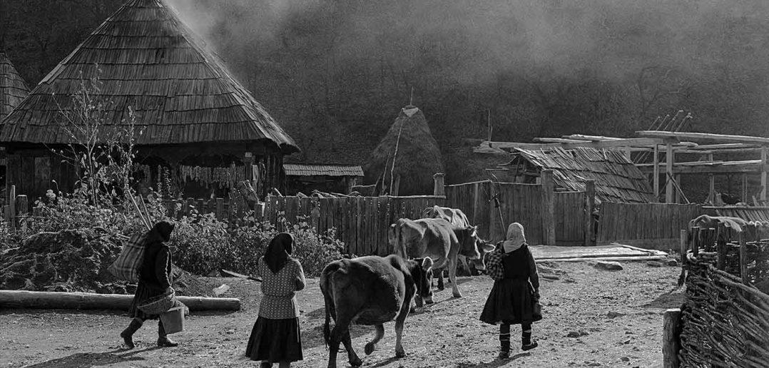 © Dan Dinescu, Ieud, 1988