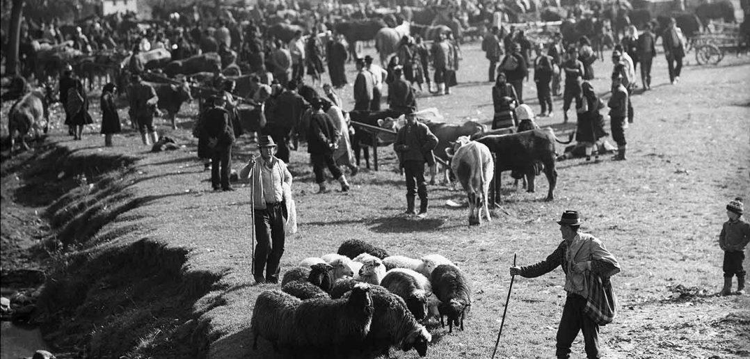 © Dan Dinescu, Târg, Dragomirești, 1982