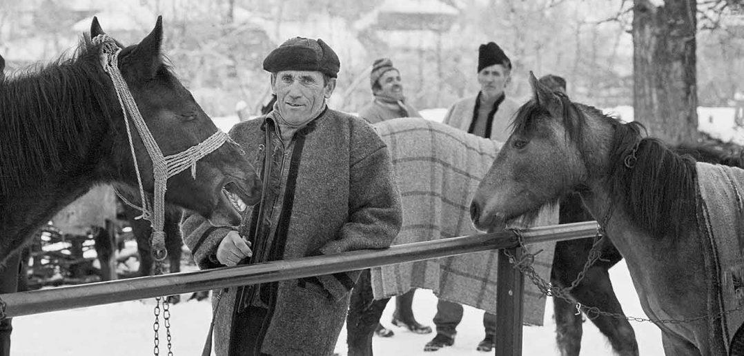 © Dan Dinescu, Târg la Bogdan Vodă, 2000.
