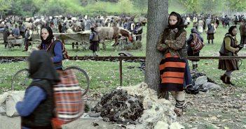 © Dan Dinescu, Târg Dragomirești, 1976.