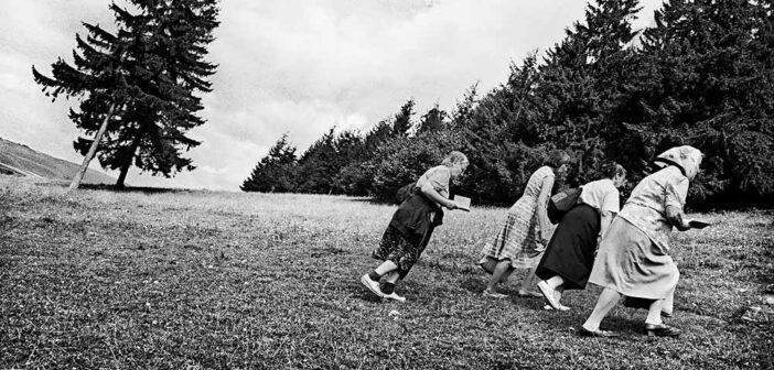 Vancsó Zoltán: Viața ciudată a pelerinilor