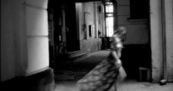 Silent Creatures © Iulian Ignat